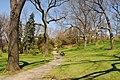 High Park, Toronto DSC 0233 (16771097204).jpg