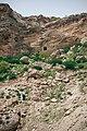 Hiking up Mala Valley to the top of Shakhki Mountain overlooking Duhok Dam 06.jpg
