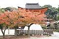 Hiroshima Fudoin Temple, Higashi Ward; November 2018 (06).jpg