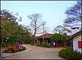 Holambra - panoramio (6).jpg