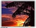 Home Sunset - Flickr - pinemikey.jpg