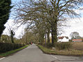 Honiley Road, Beausale - geograph.org.uk - 1769552.jpg