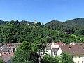 Hornberg im Schwarzwald - panoramio (3).jpg