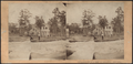 House on a island on Lake George, by S. Beer.png