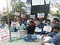Hunger strike Delhi.jpg