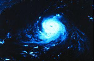 Hurricane Ella (1978) - Image: Hurricane Ella 1978