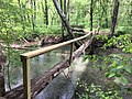 Hurricane Mill Creek Footbridge.jpg