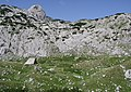 Huts of Crepulj Poljana P1010144mod.jpg