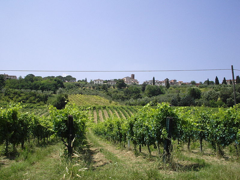 File:IMG 0144 Veduta di Castelnuovo.JPG
