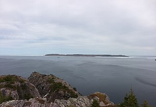 Baccalieu Island island in Canada