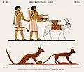 Illustration from Monuments de l'Egypte de la Nubie by Jean-François Champollion, digitally enhanced by rawpixel-com 82.jpg