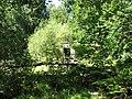 In the jungle (27306113250).jpg