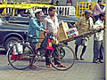 India-7873 - Flickr - archer10 (Dennis).jpg