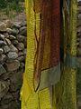 India - Ladakh - Leh - 003 - Guesthouse garden (3842219154).jpg