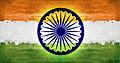 Indian Flag ).jpg