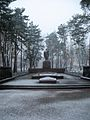 Irpen. 2010. First snow. Monument of the Great Patriotic War 2.jpg