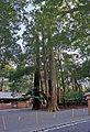 Ise grand shrine Naiku , 伊勢神宮 内宮 - panoramio (13).jpg