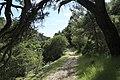 J35 820 Weg zum Kloster Blaca.jpg