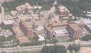 University of Florida Health Science Center medical division of the University of Florida