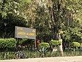 Jardín Coyoacán.jpg