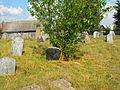 Jewish cemeteries in Pastavy 1h.jpg