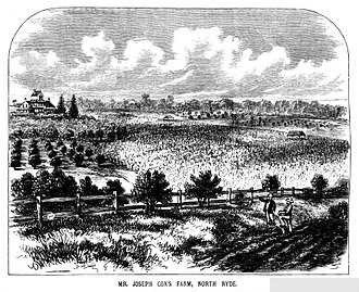 North Ryde, New South Wales - Joseph Cox's Farm, North Ryde, c1882