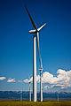 Judith Gap Wind Farm Montana.jpg