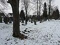 Juedischer Friedhof Freistett 13 fcm.jpg