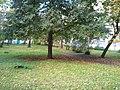 Jugla, Tirzas iela, Riga, Latvia - panoramio (8).jpg