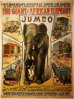 historic elephant 1860-1885