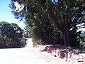 Jundiaí - SP - panoramio (75).jpg