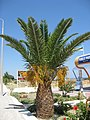 Kallithea, Greece - panoramio (21).jpg