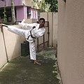 Karate kick 1.jpg