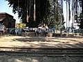 Katwa to Ahmedpur Narrow gaugue railway 04.jpg