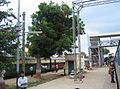 Kausi Kala Railway Station Mathura, Delhi (1).JPG
