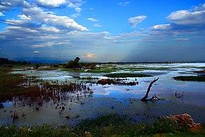 Озеро Керкини с заболоченным участком у берега
