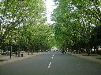 Tokai University - Image: Keyakinamiki