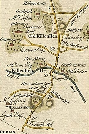 Battle of Kilcullen - Map of the area (1777–83)
