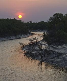 King River (Kimberley, Western Australia)