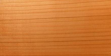 Michaela v obci Hrozová Metoda datování dřeva je založena na měření šířek letokruhů (Kearnnel.