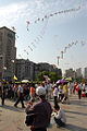 Kite-trains-shanghai.jpg