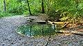 Kleine Quelle bei Bötersheim.jpg