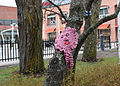 Knitted graffiti in Kerava C IMG 2911.JPG