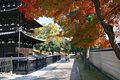 Kofukuji01s3872.jpg