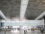 Kolkata Airport New Terminal 05.JPG