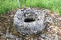 Kopfweiden Taufstein Selberten 07.jpg
