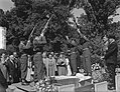 Kordelaar, A. van, Bestanddeelnr 905-8716.jpg