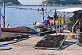 Korea-Heuksando-Readying kelp for sale 11-02805.JPG
