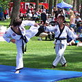 Korean Martial Arts 18.jpg