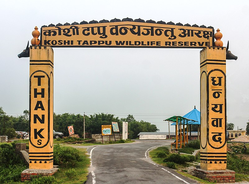 Welcome to Koshi Tappu Wildlife Reserve